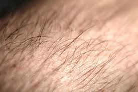 hair loss and chemotherapy
